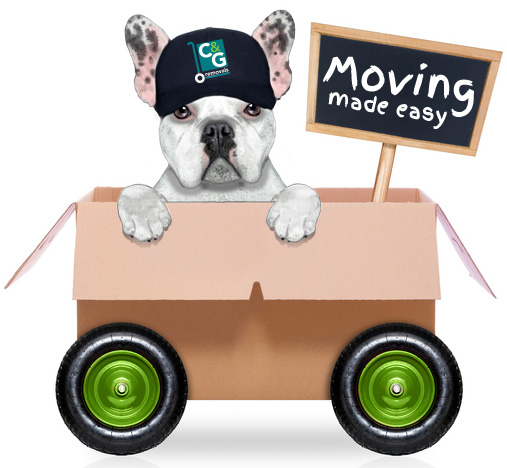 Pearl The Dog of C&G Removals